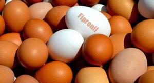 uova e derivati contaminati al fipronil