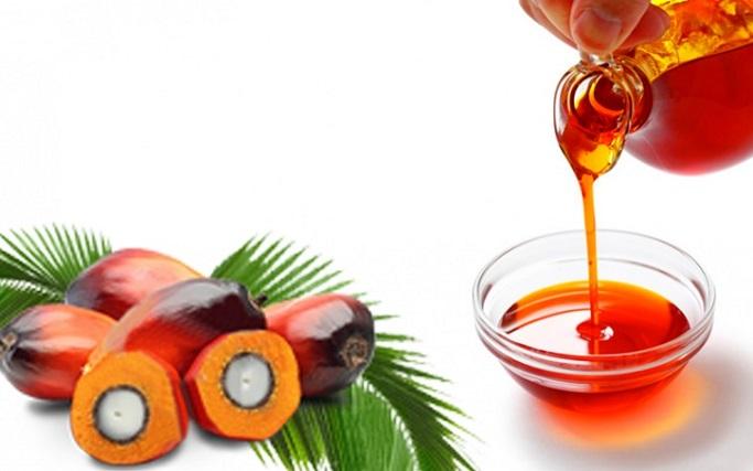Olio di palma fa male: i dati scientifici sui rischi per la salute