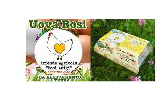 Salmonella in Italia: