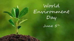 Giornata mondiale dell'ambiente 2020