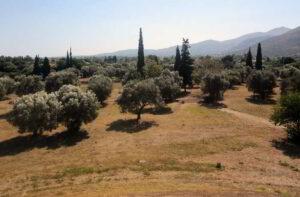 La battaglia di Maratona del 490 a.C.: breve resoconto